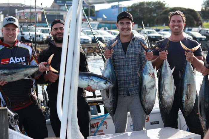 Four recreational tuna fishermen proudly hold their freshly-caught southern bluefin tuna on a charter boat in Portland.   ABC South West Victoria: Emily Bissland.