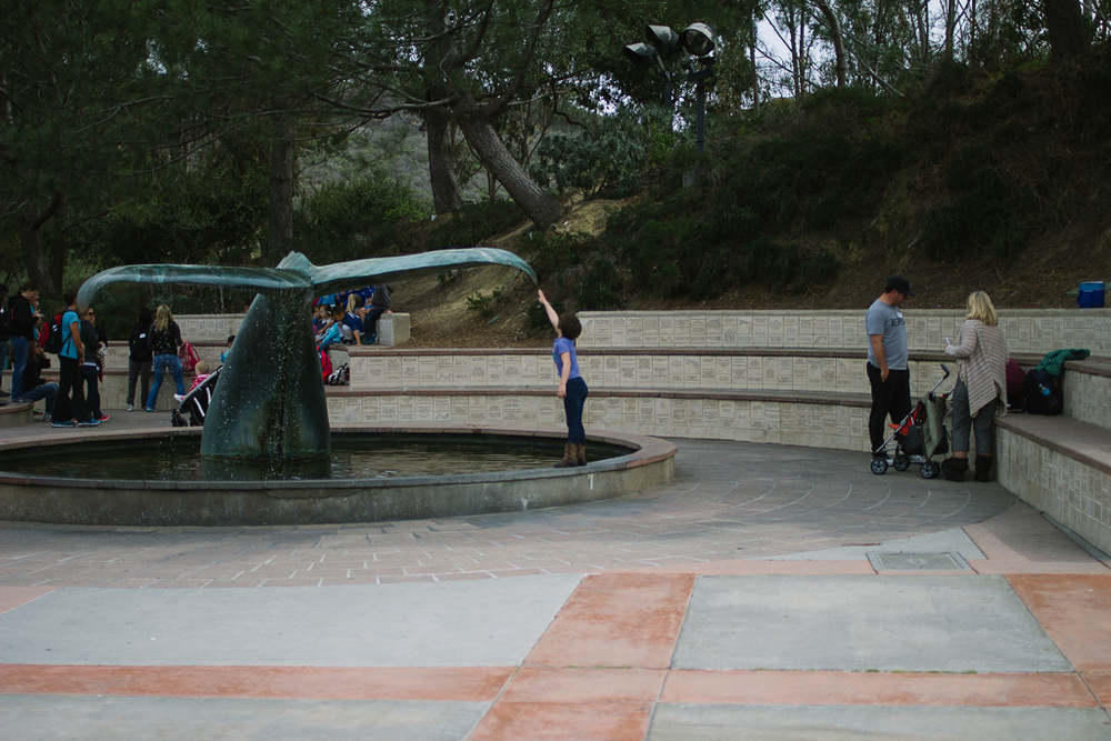 San Diego Blog-100.jpg