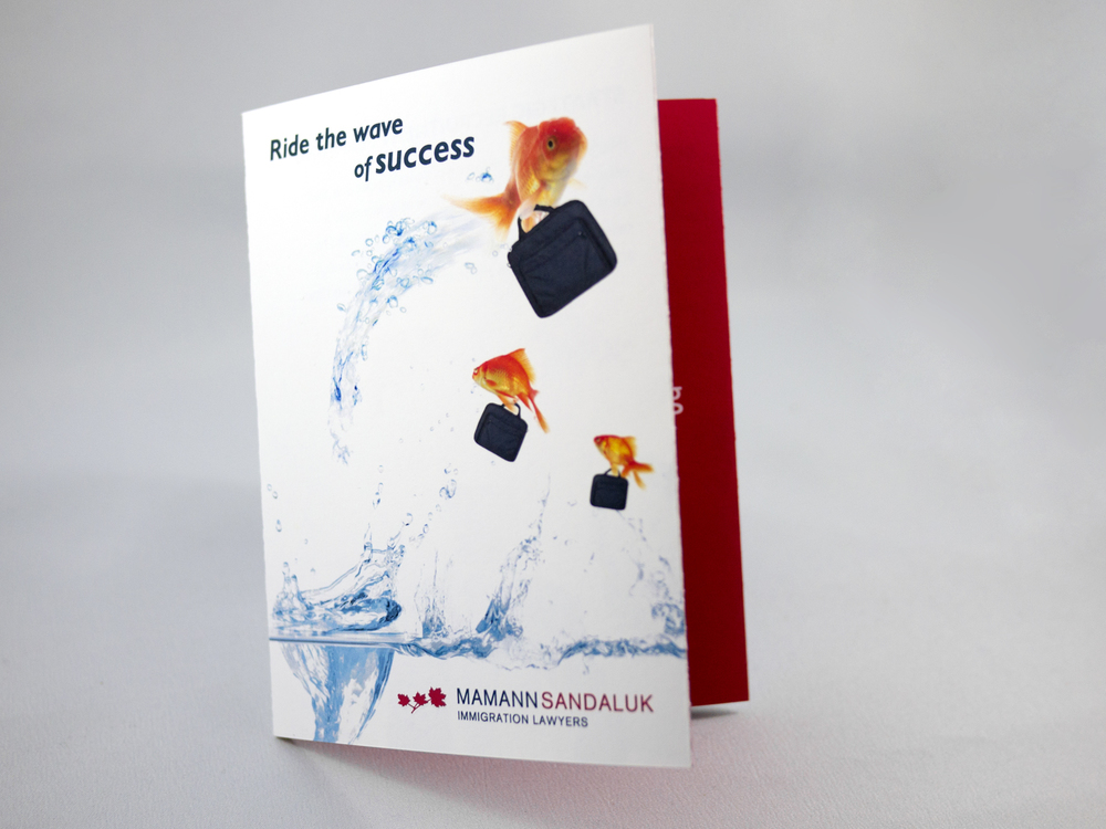 MS-Brochure1.jpg