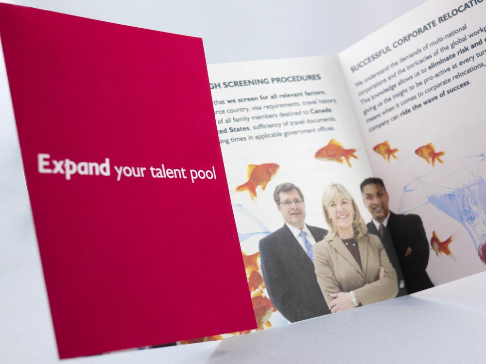 MS-Brochure2.jpg