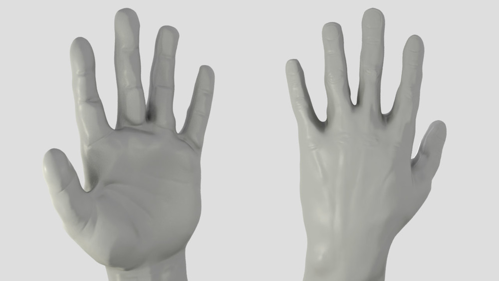 3 hour male hand study from life.