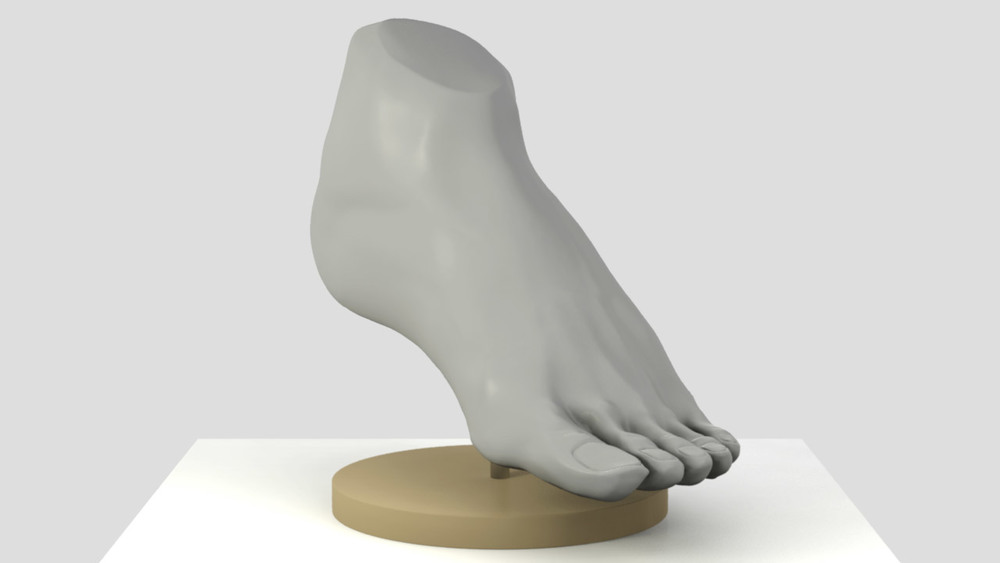 sculptris_male_foot_instep.jpg