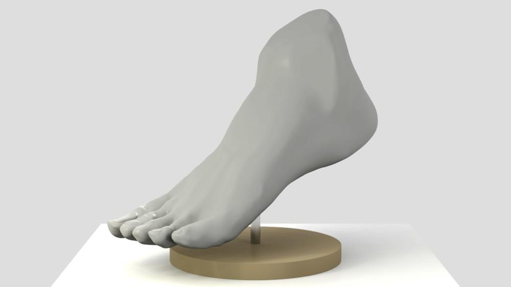 sculptris_male_foot_outside.jpg