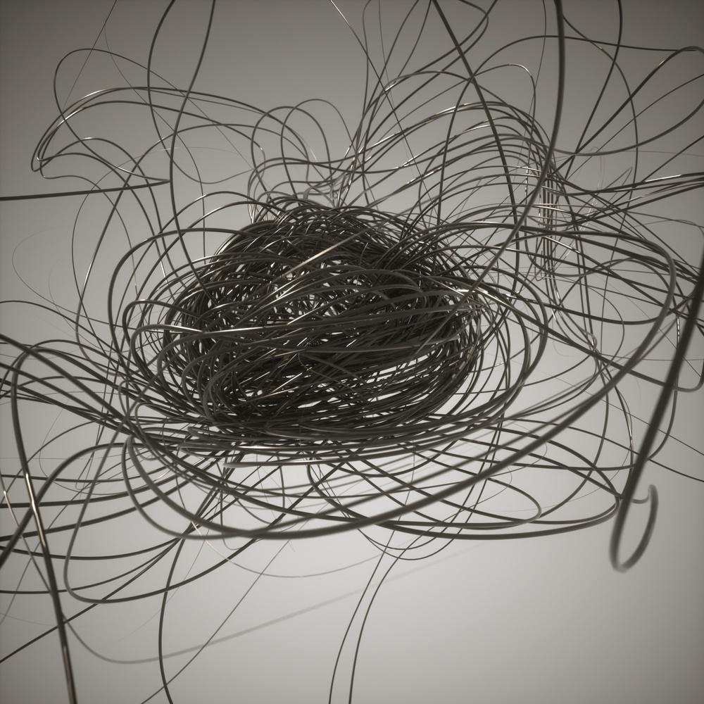nest001.jpg