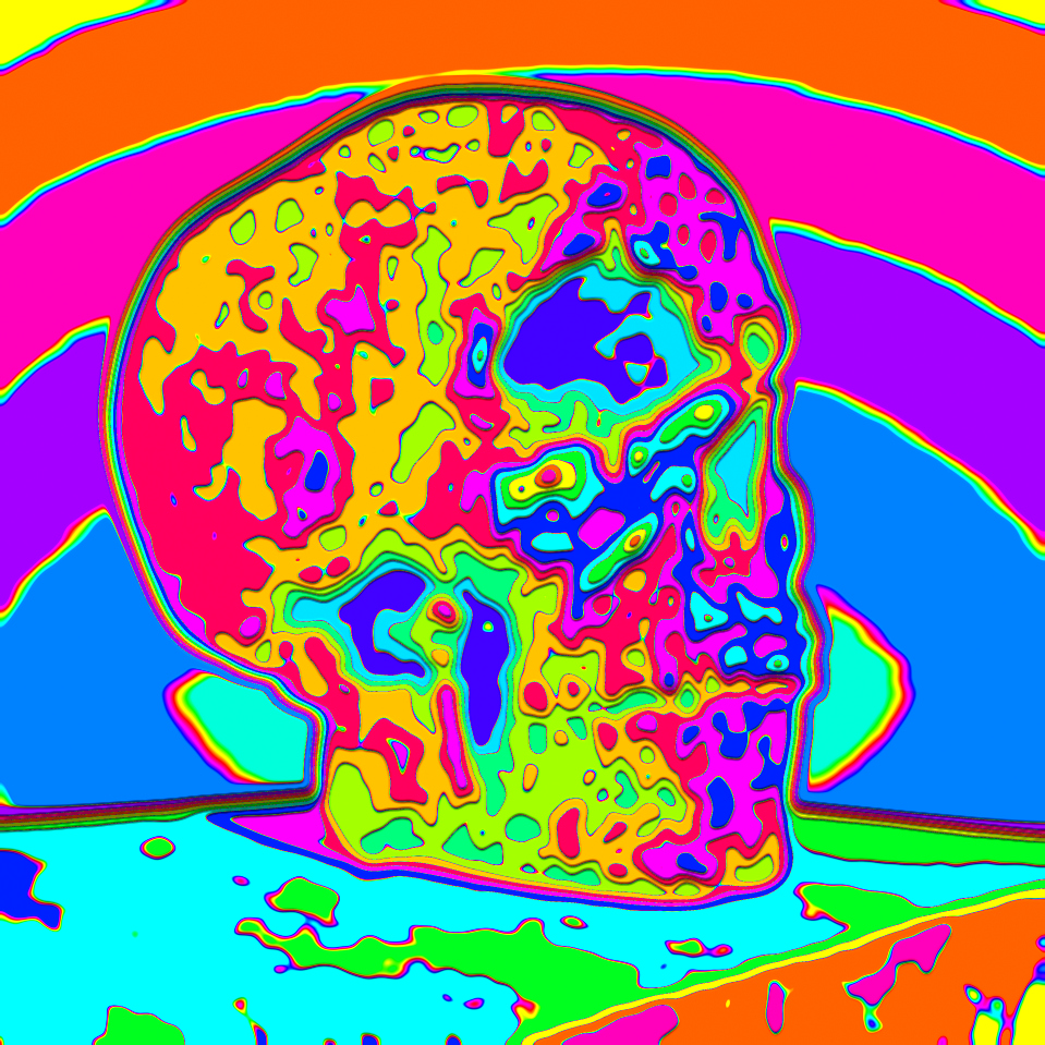 skull_cybermonk-de_artification_004.jpg