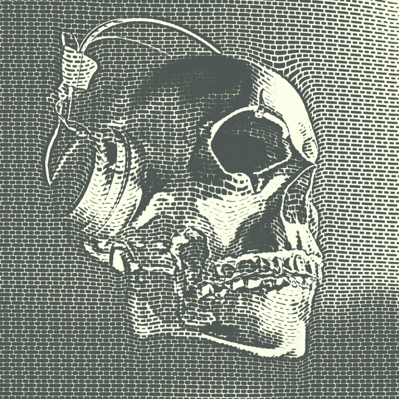 skull_cybermonk-de_artification_090_fk.jpg