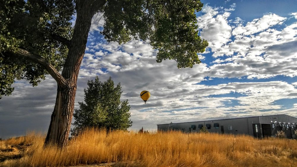 fallballoonflight.jpg