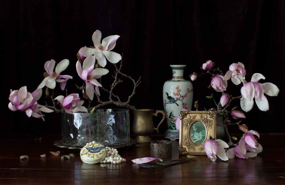 Still Life with Magnolia  2013