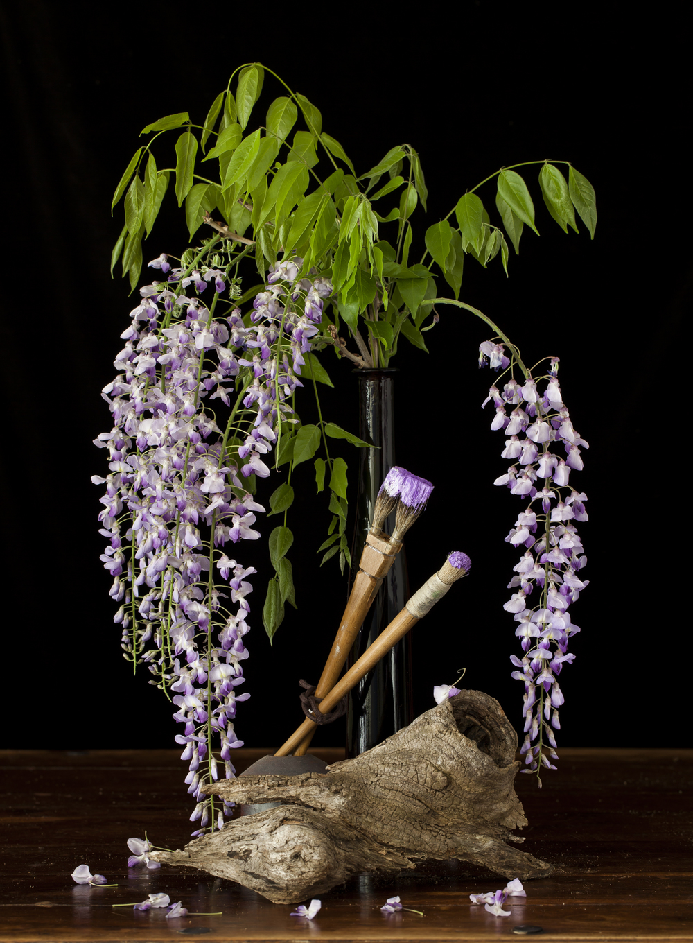 Wisteria in Bloom Still Life 2015
