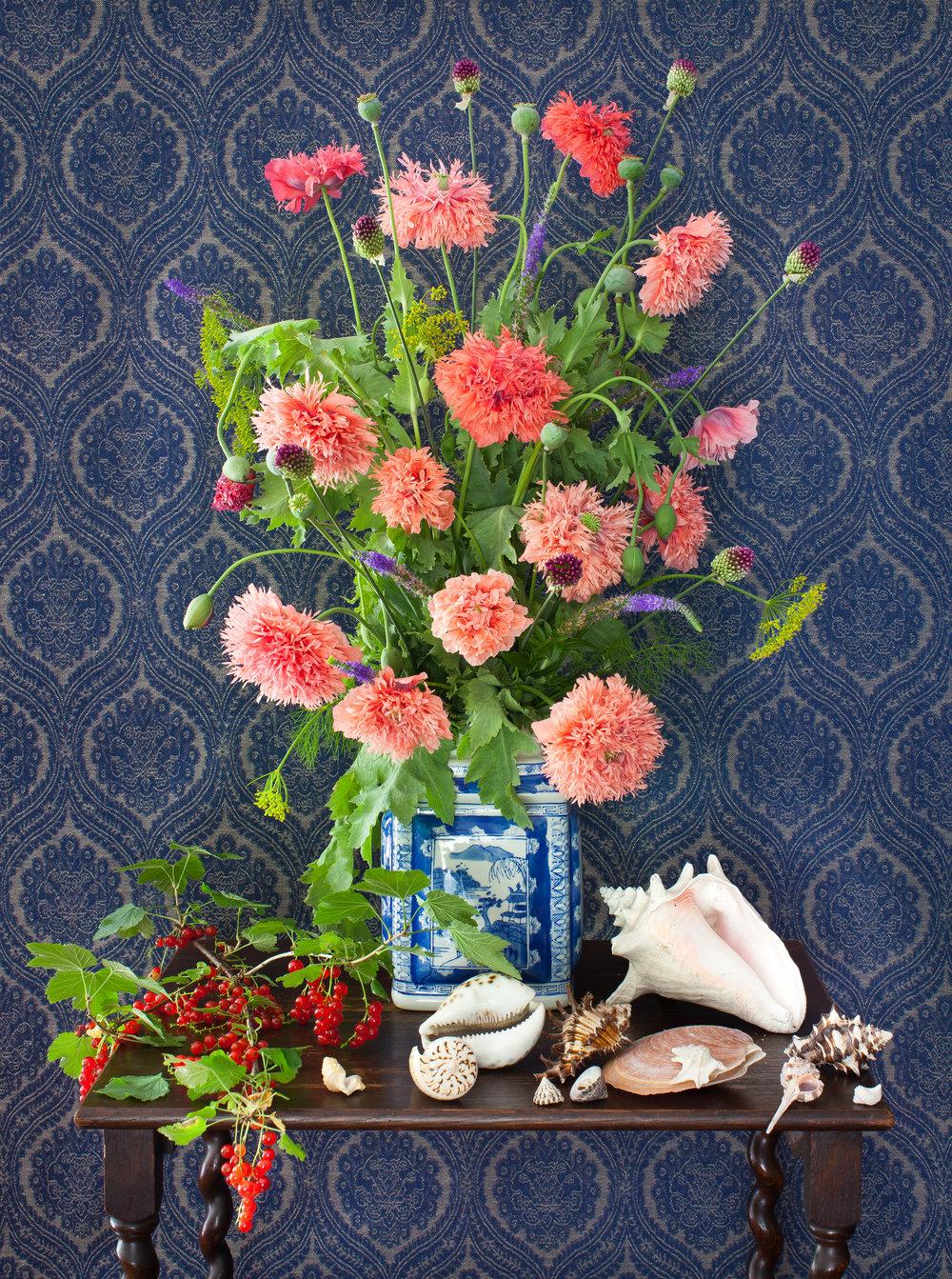 Pink Poppy Flowers & Shells 2017