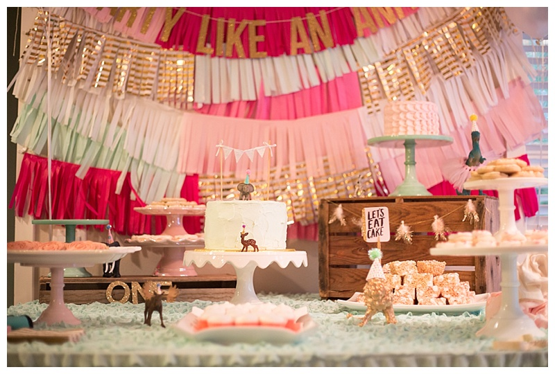 Cute baby girl first Birthday Party Solie Designs