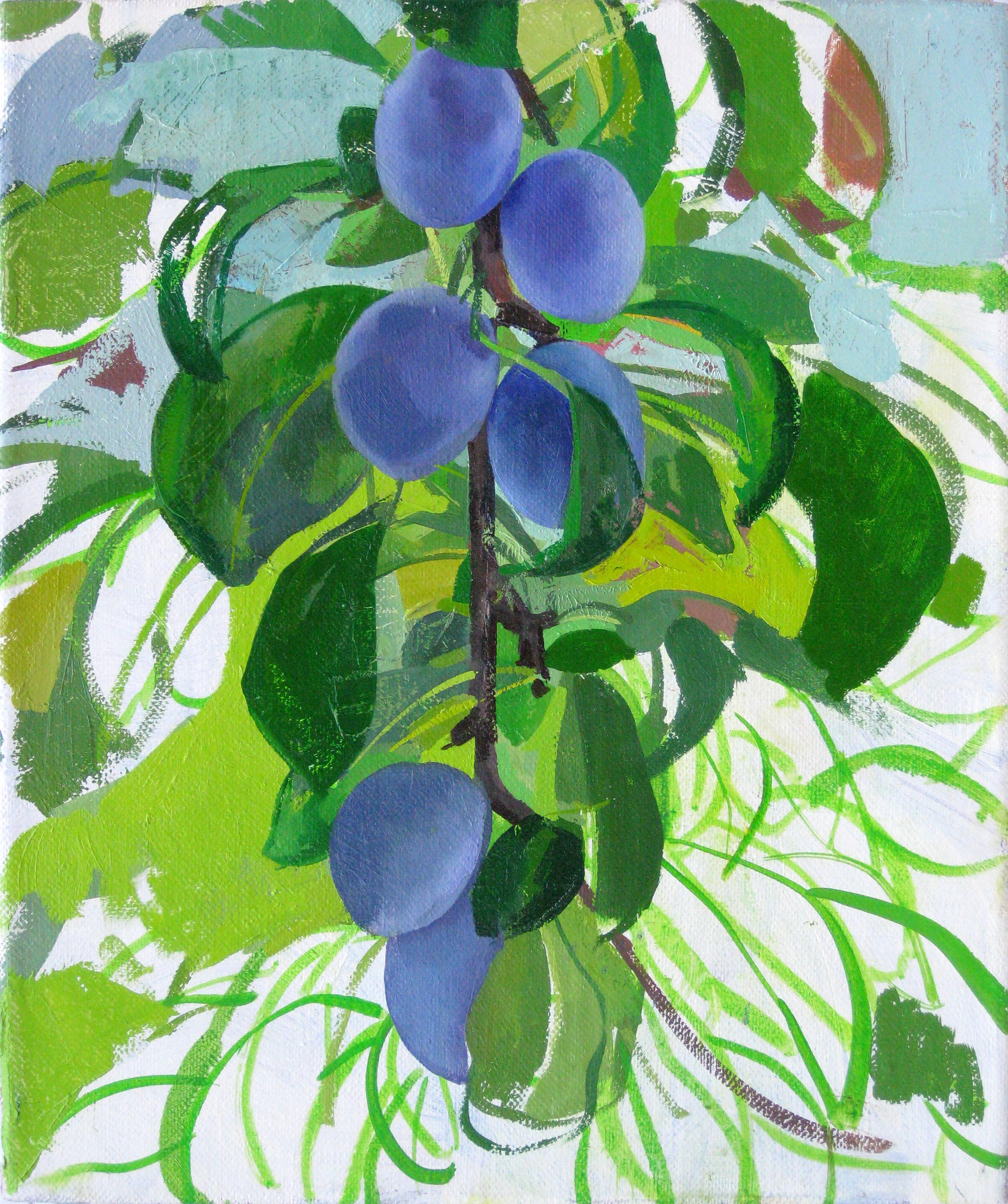 plums4