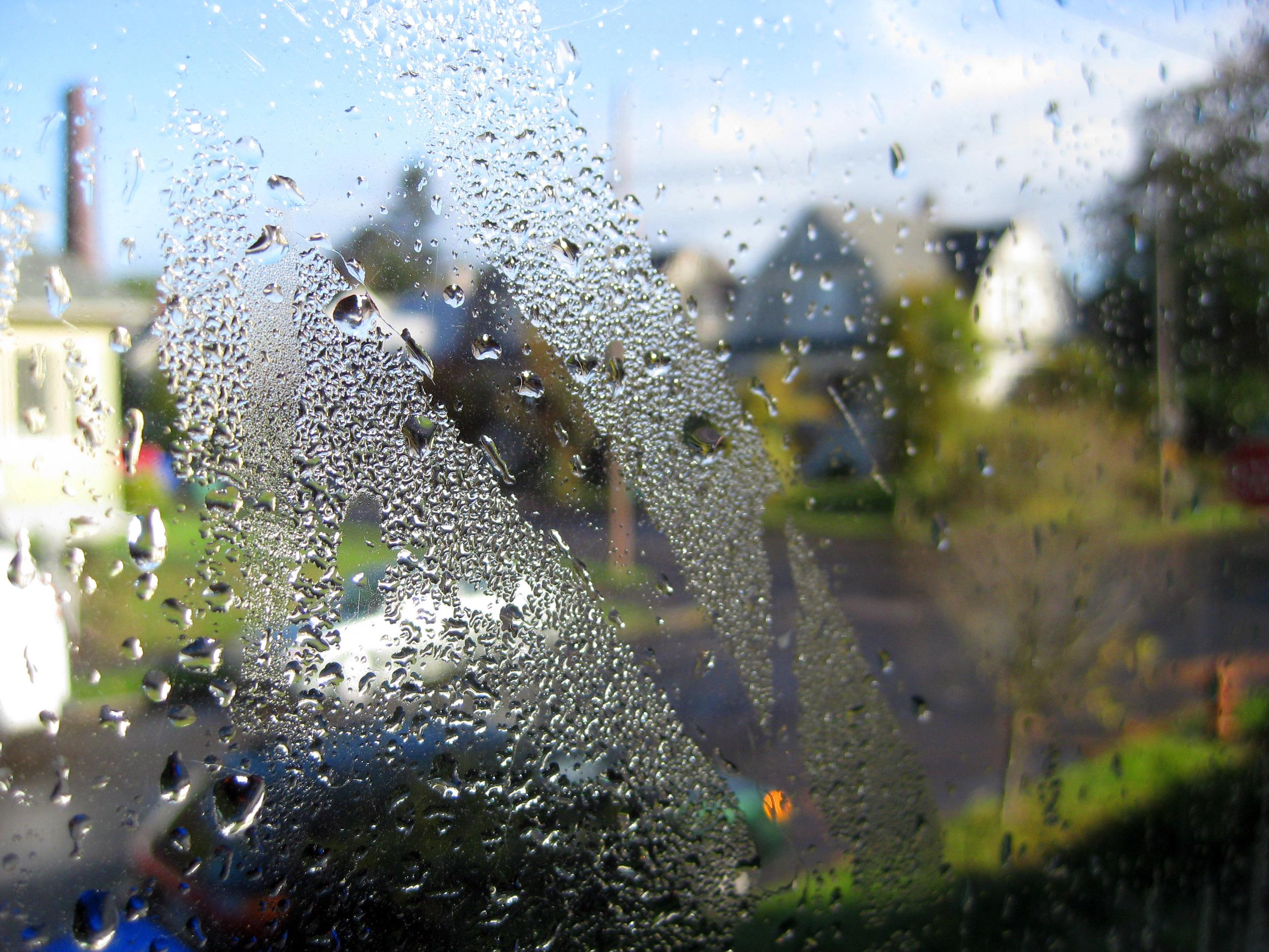 condensation view 2