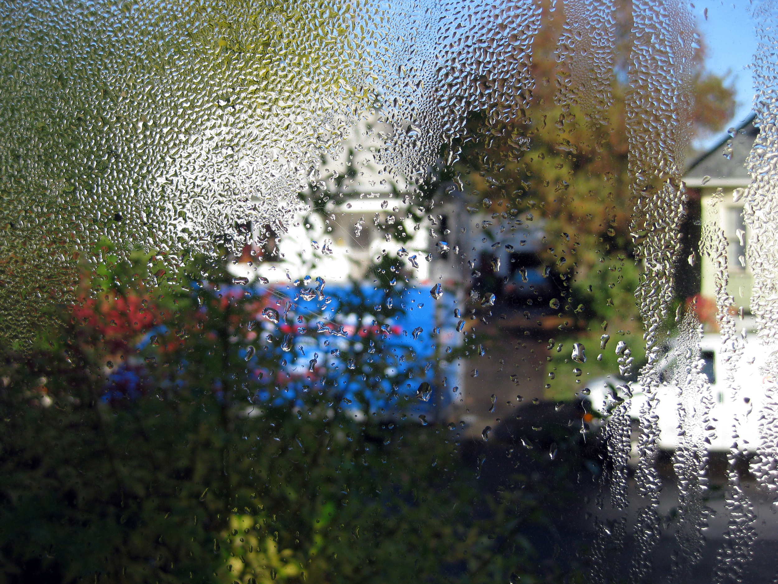 condensation view 3