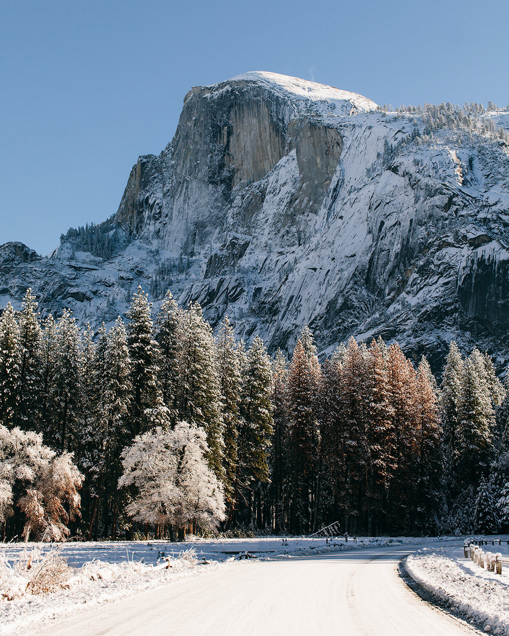BrandonSampson_Yosemite_161224-IMG_1574-Edit_web.jpg