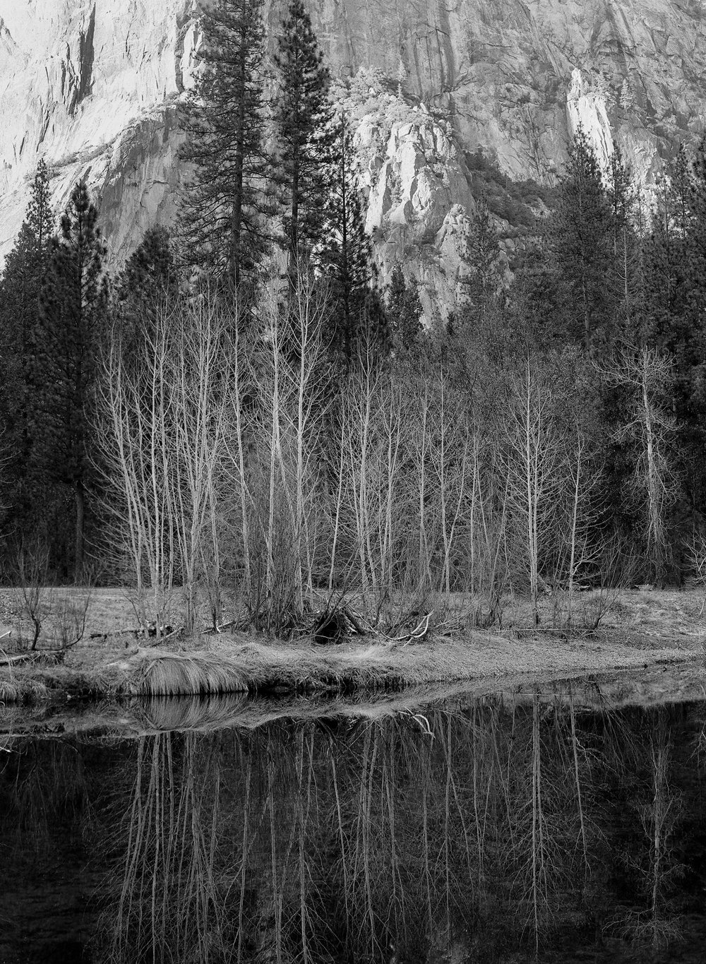 Merced Reflection, Yosemite Valley