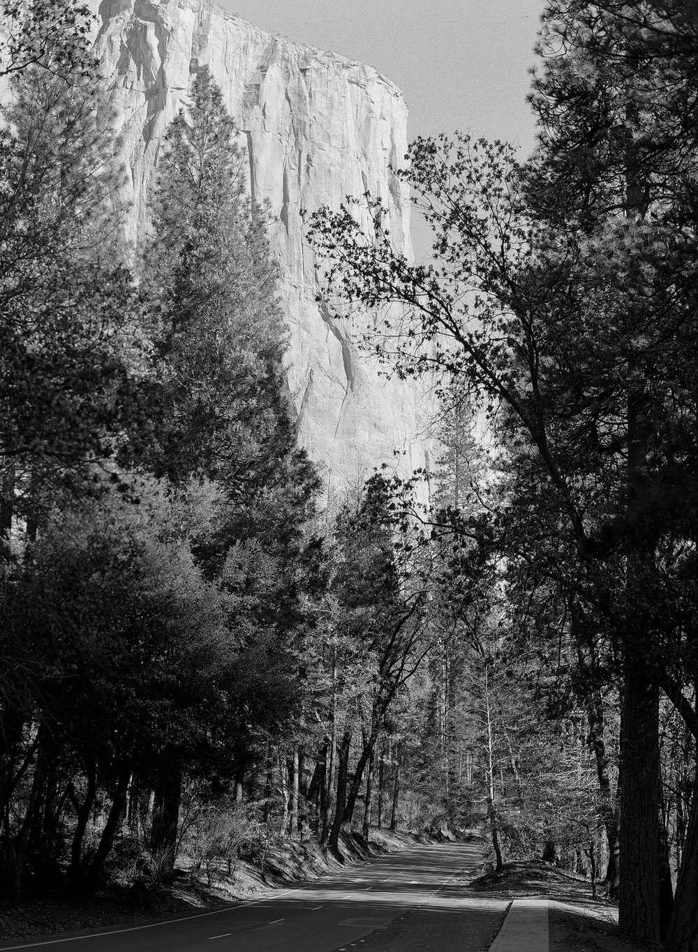 El Cap From Northside Drive, Yosemite Valley