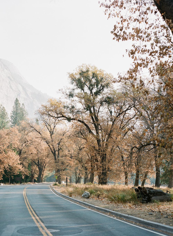 Brandon Sampson-2018-11-Yosemite-20.jpg