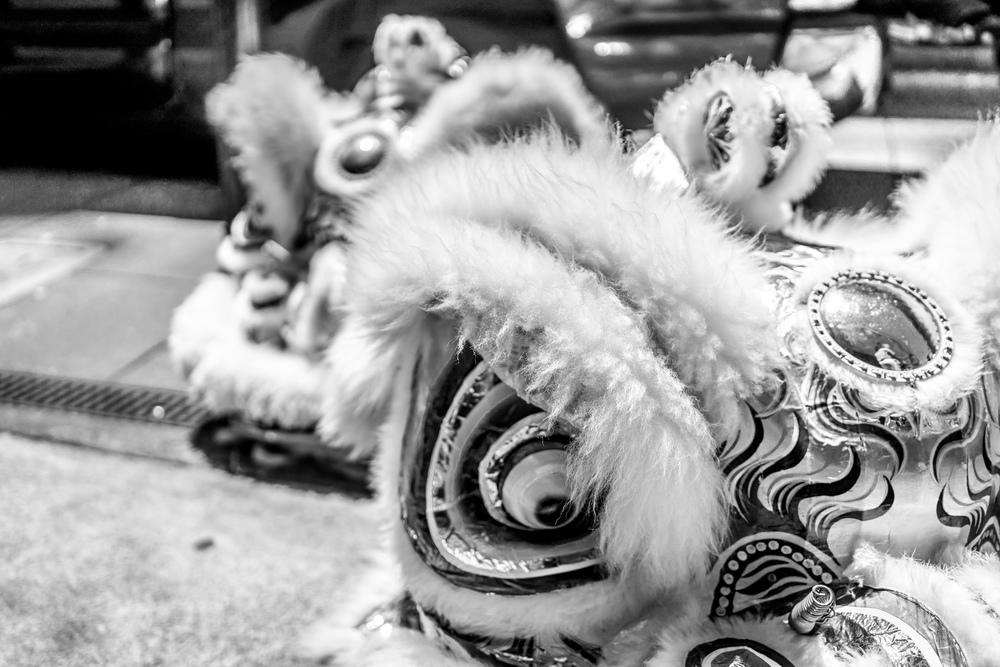 Lionhead BW.jpg