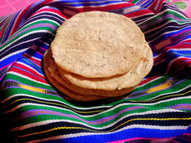 corn tortillas.jpg