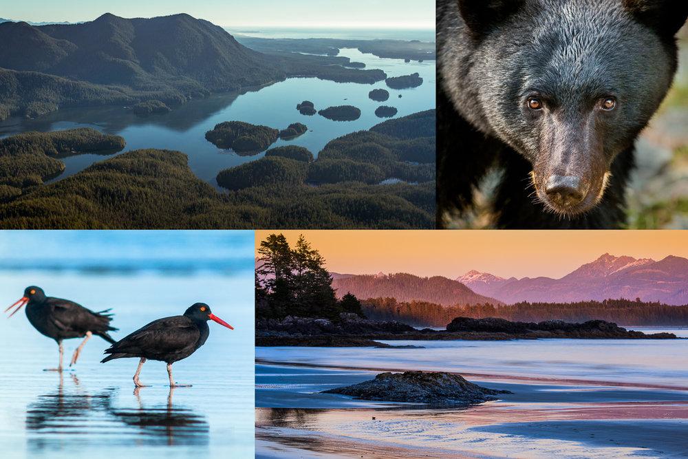 vancouver island photo workshop