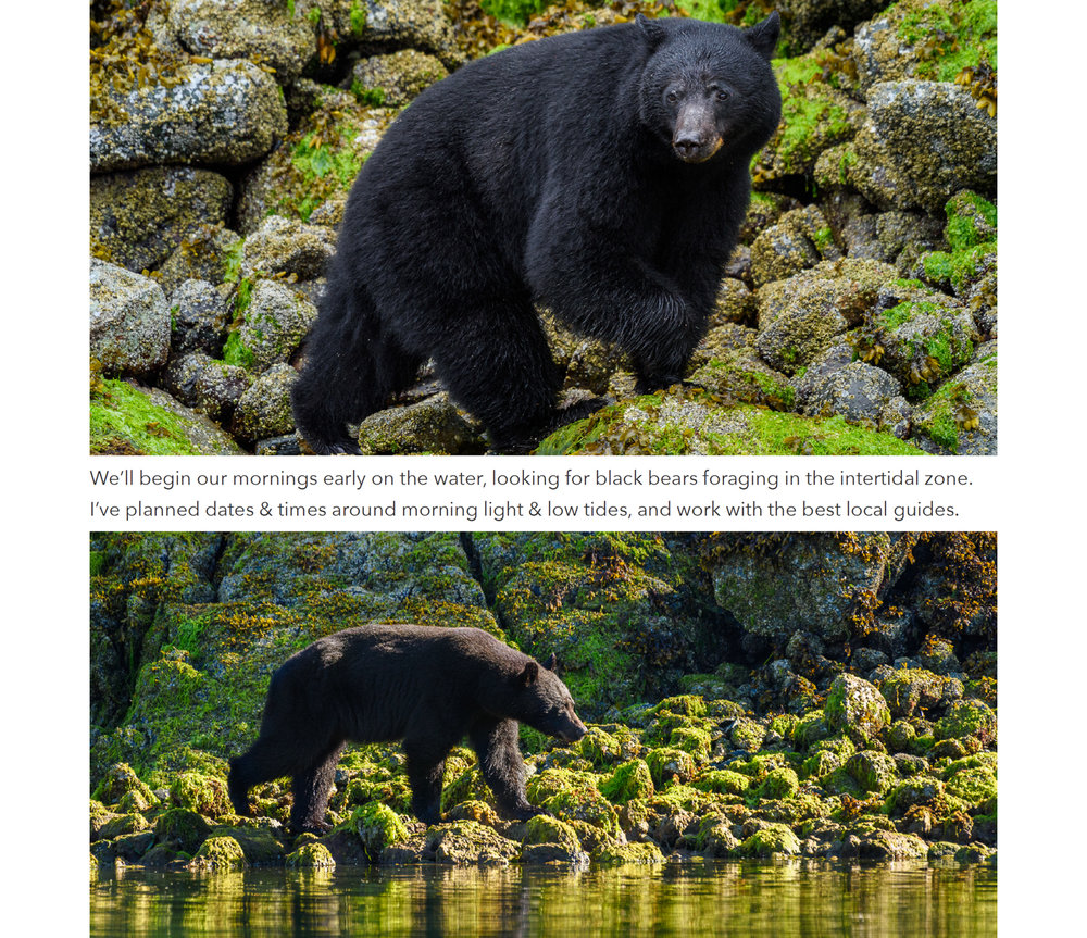 3 vancouver island photo workshop.jpg