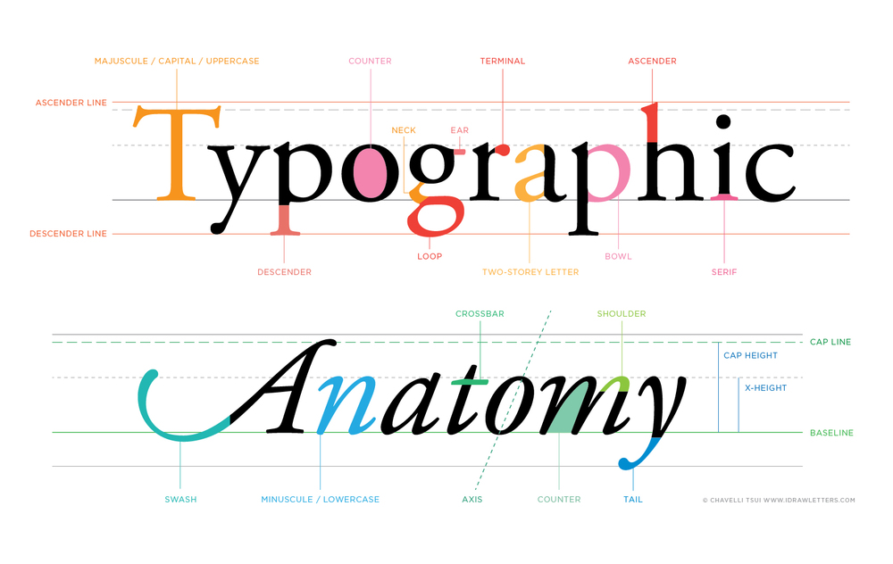 The Anatomy of Letterforms | www.idrawletters.com