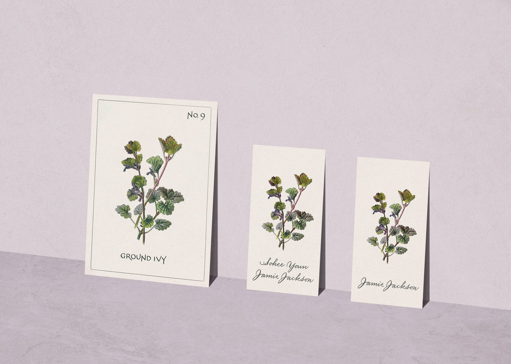 Botanical illustration wedding menu, escort card and place card in calligraphy | www.chavelli.com