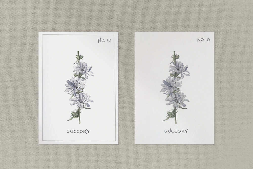 Botanical illustration wedding menu and table marker in calligraphy | www.chavelli.com
