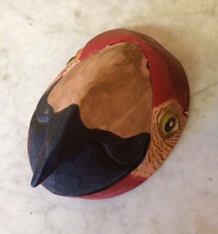 parrot-mask.jpg