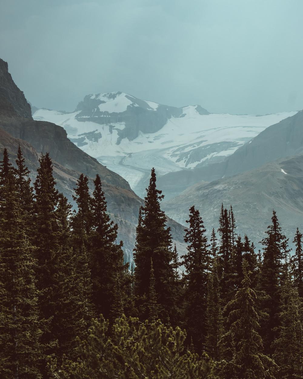 Icefields Parkway.jpg