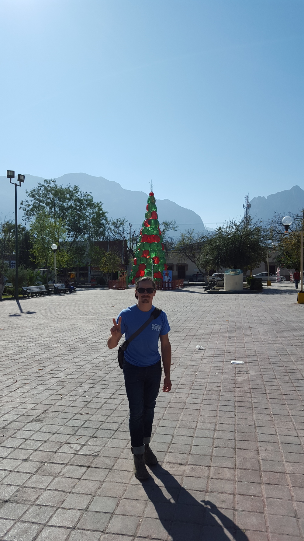 christmas-in-mexico.img