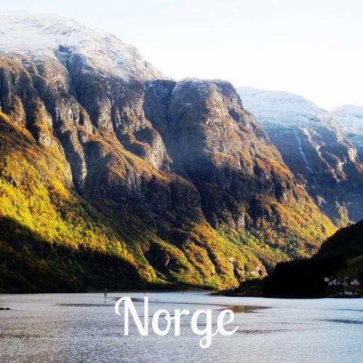 Naeröyfjord (LJ).jpg