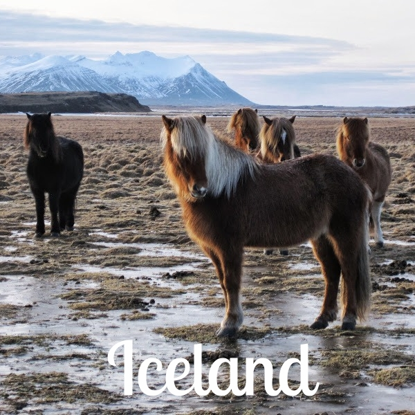 Island 4 (LJ).jpg