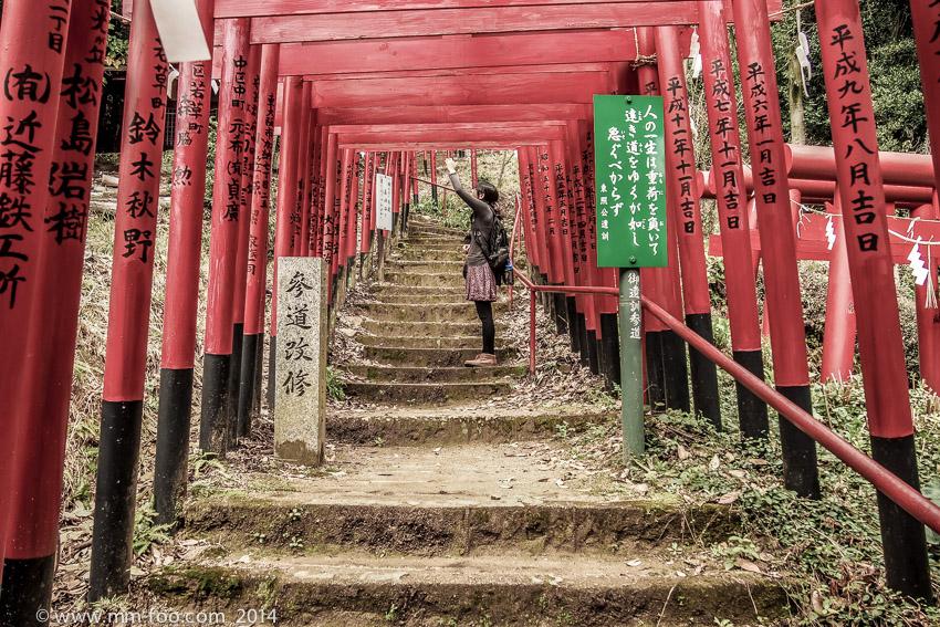 Mini torii gates