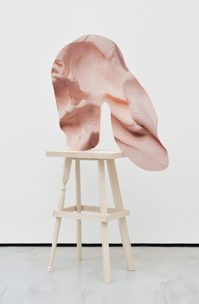 Rachel de Joode's Artworks Mesh Sculpture and Photography