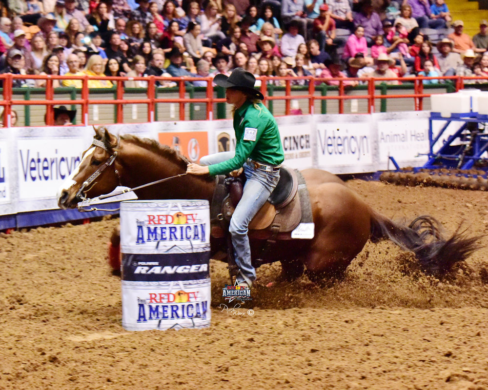 Freckles Ta Fame, a stallion trained and campaigned through his futurity year by Ashley and owned by Joe and Carla Spitz, running in rfdtv's the american semifinals - 2016!