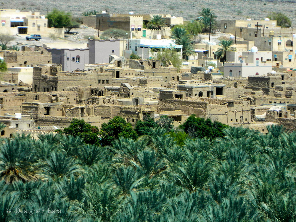 Arab Mud Houses