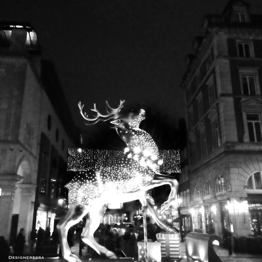 The beautifully lit reindeer. The noir photo looked more dramatic