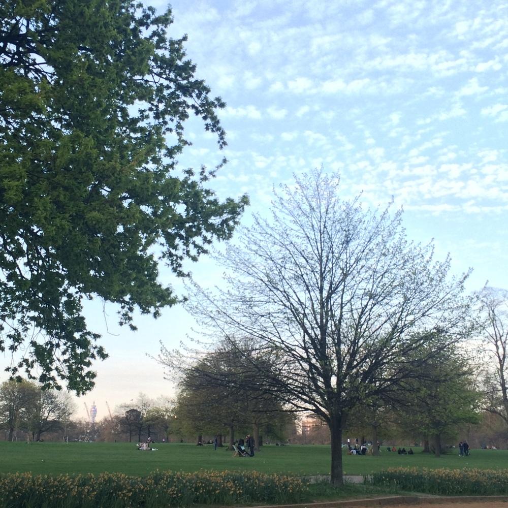 Hyde Park Clouds