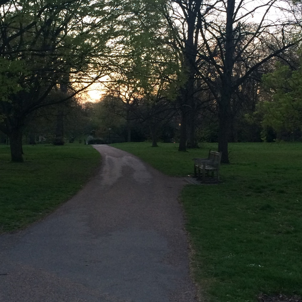 Sunset in Hyde Park
