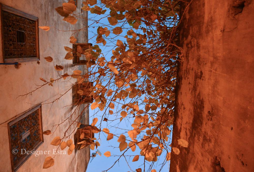 Around Fez