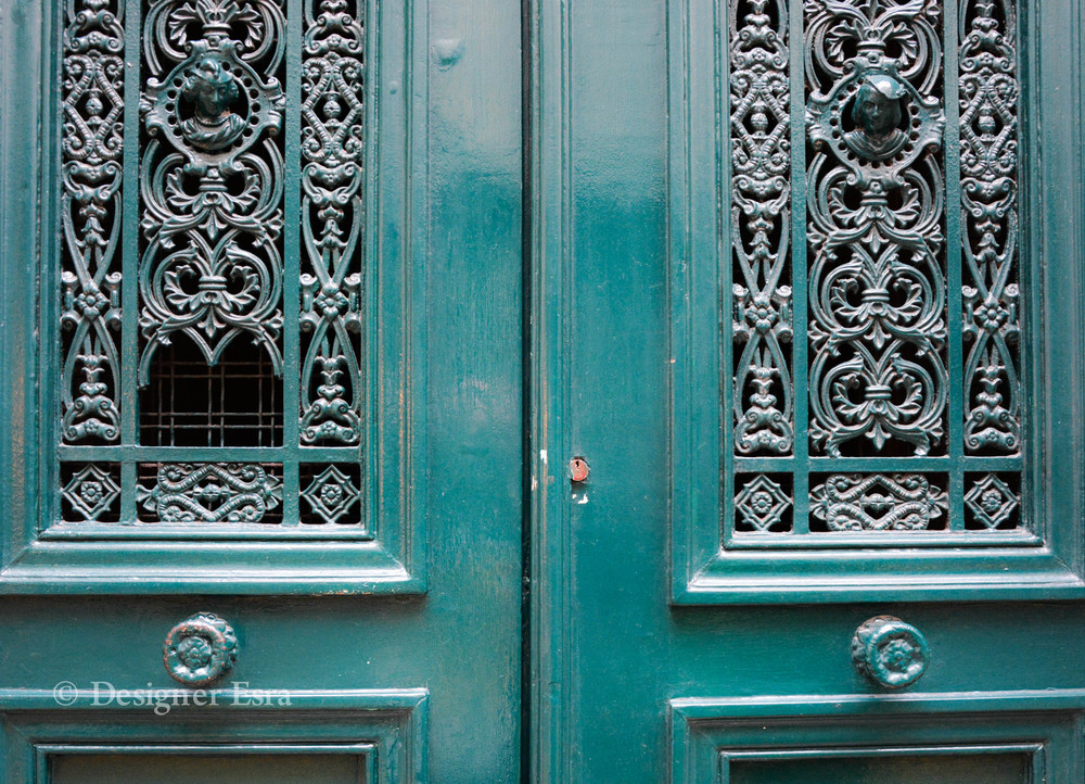 Detailed Door in Paris