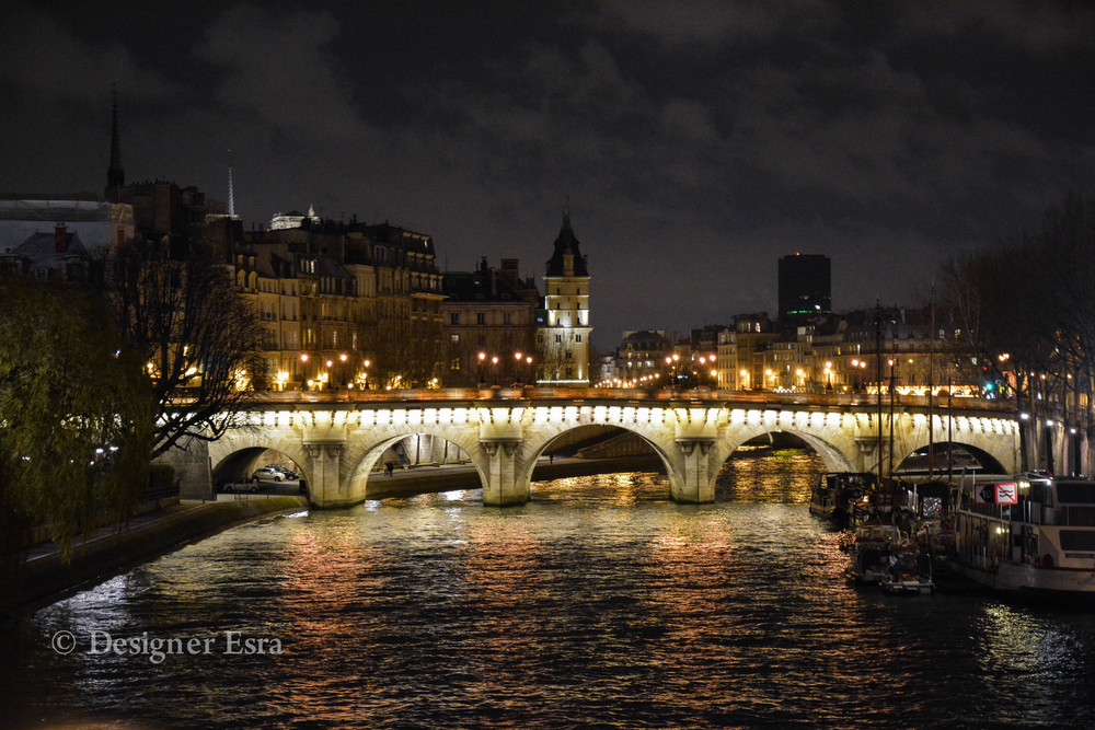 Paris Bridges