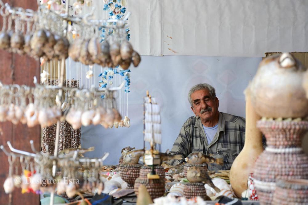 Shells in Iran
