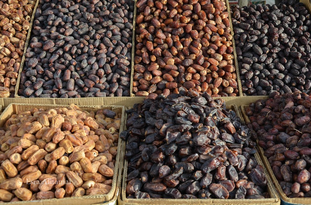 Fresh Dates in Saudi - تمر سعودي