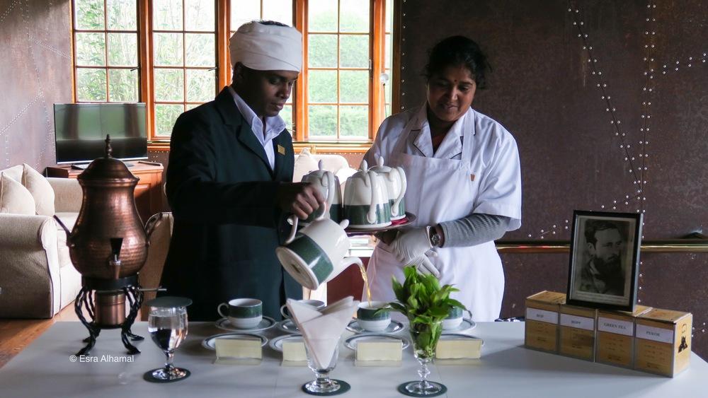 Tea Tasting at the Heritance Tea Factory.