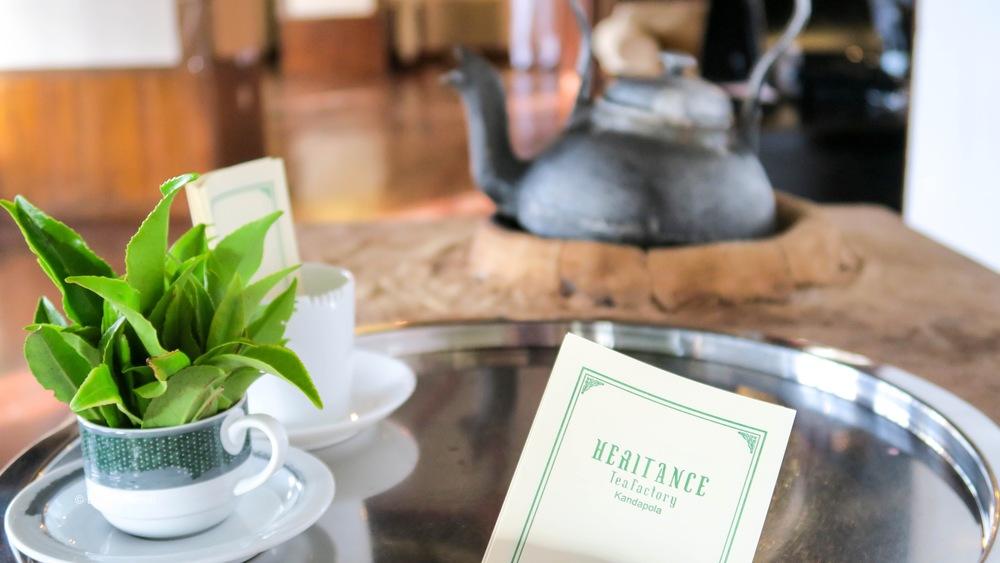 Tea at Heritance Tea Factory