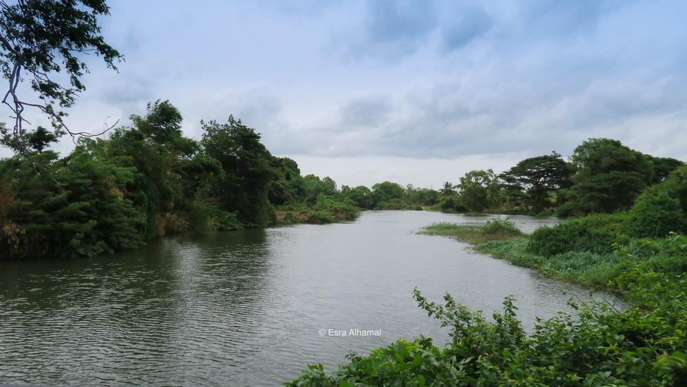 Kandalama Lake outside Heritance Kandalama