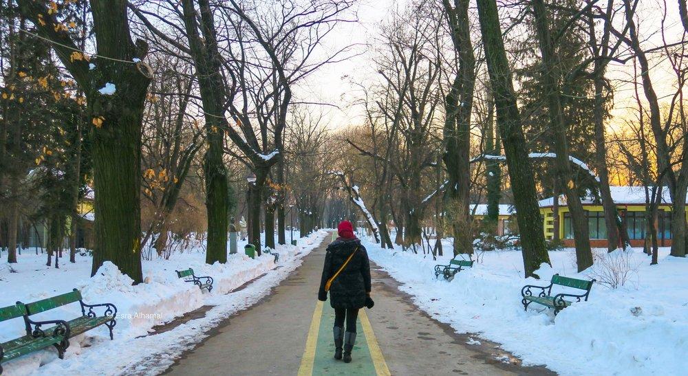 في الثلج في رومانيا
